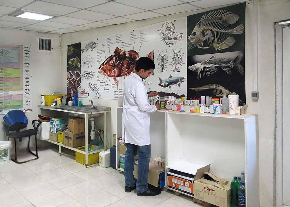 دکتر یزدانی در آزمایشگاه - جدید2